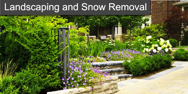 Landscape and Snow Removal